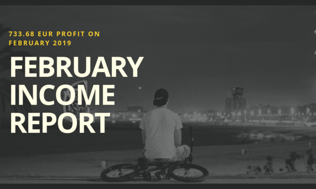 My First Income Report – 733.68 EUR Profit On February 2019