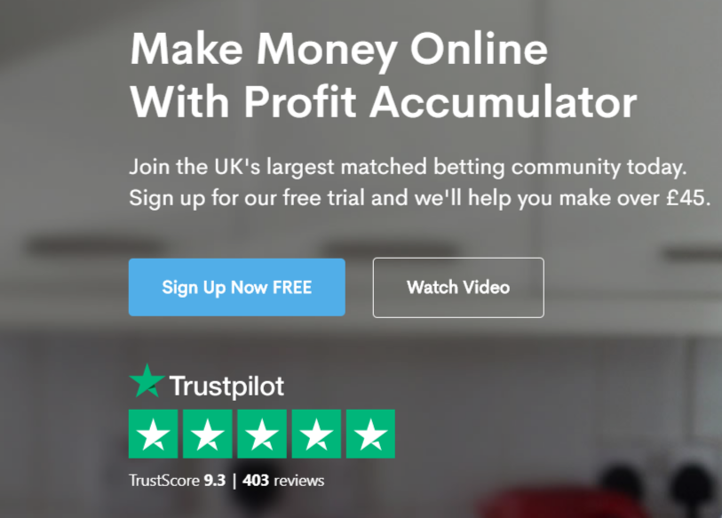 profit accumulator review