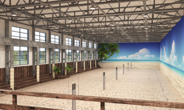 New project at Crowdestor – Indoor beach volleyball center
