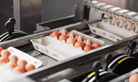 Invest in Aluksne Poultry Farm