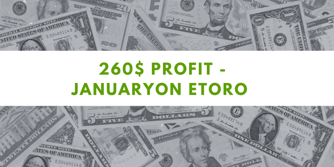 eToro one Million challenge – 260$ profit on January 2021
